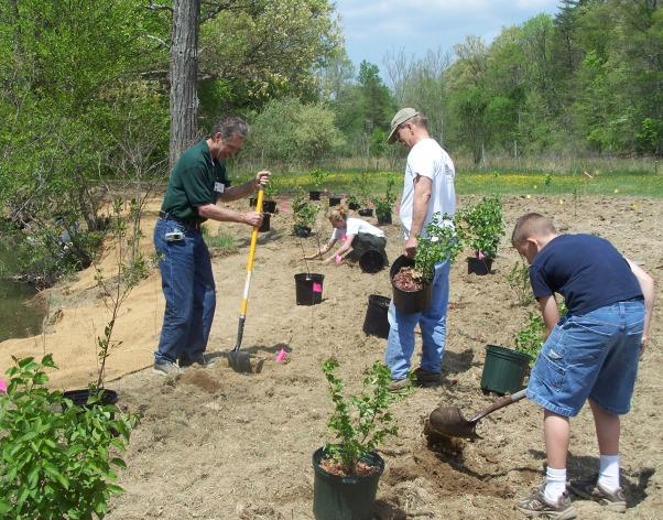 Participants_planting_trees