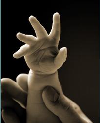 Newborn-hand