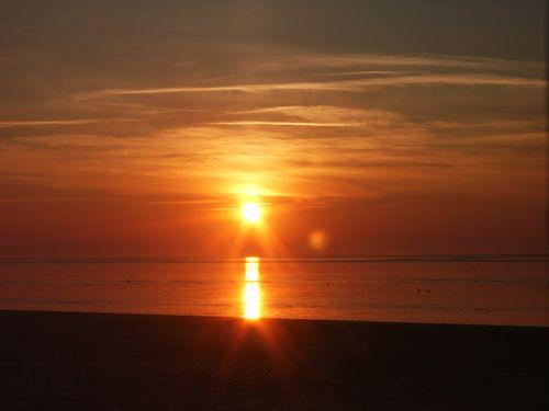 Snett winter sun 085
