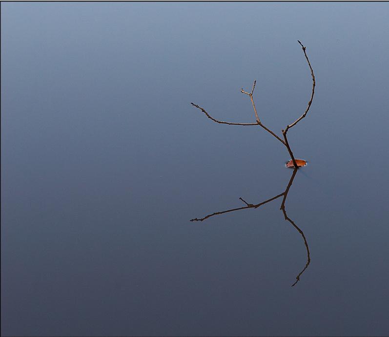 Stillness-799025