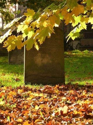 Autumn grave